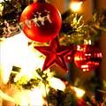 Feliz Natal e um ano novo de muito sucesso!