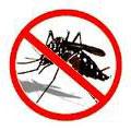 Brasil terá vacina contra a dengue em até quatro anos