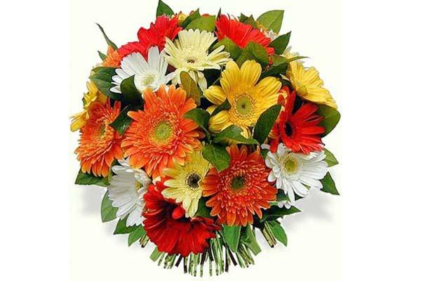 Feira Mãe Flor 2011