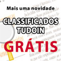 Classificados TUDOIN