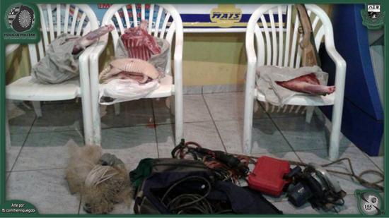 Policiais Apreendem Suspeitos de Furto em Zona Rural