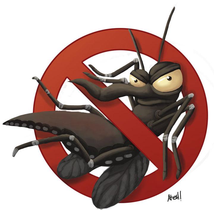 Lei que aumenta multa para imóveis com focos do Aedes entra em vigor